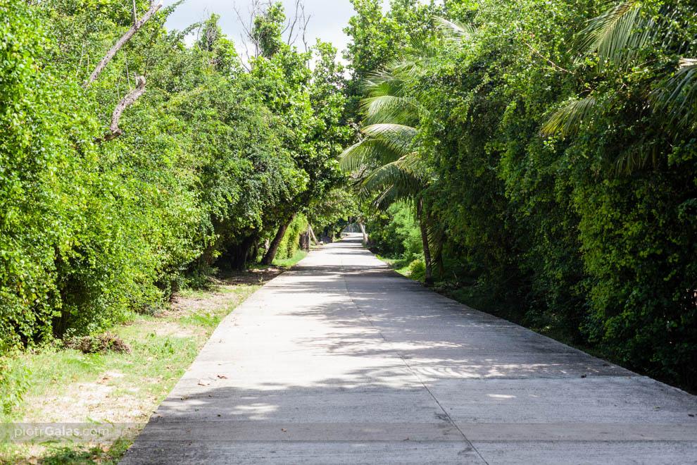 Fragment drogi pomiędzy plażami Anse Gross Roche i Anse Banane