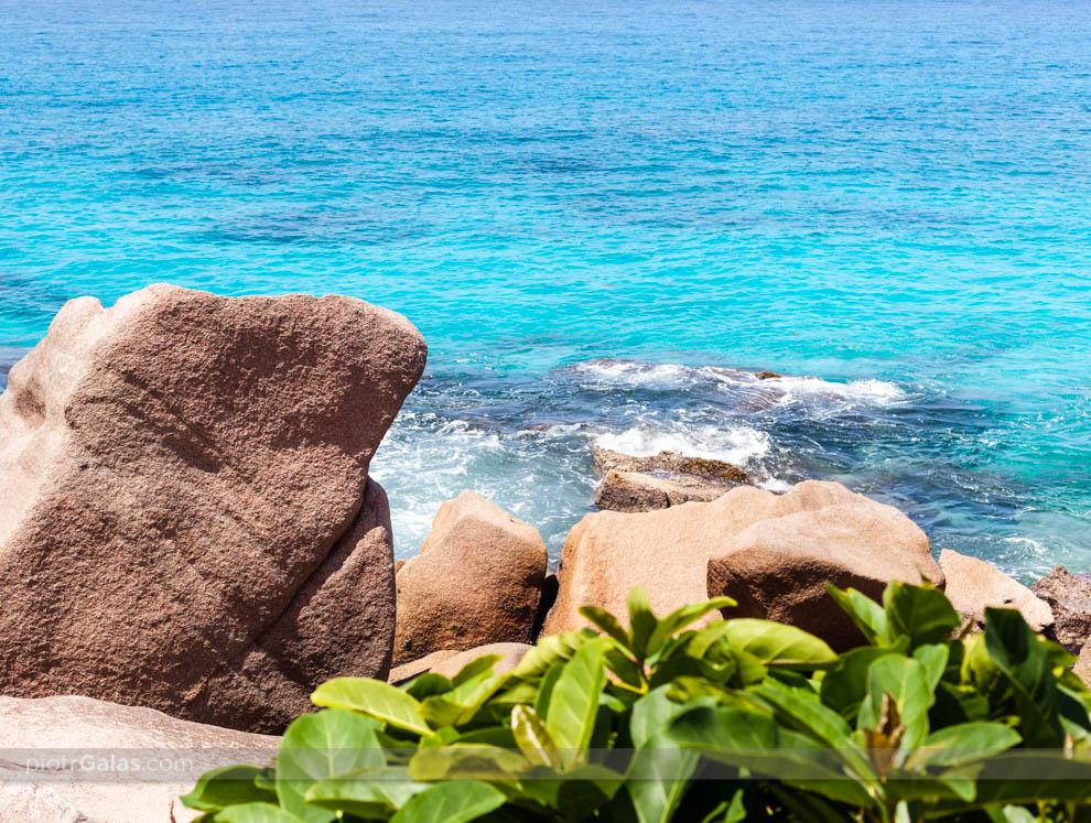 Głazy i zieleń na plaży Anse Patates