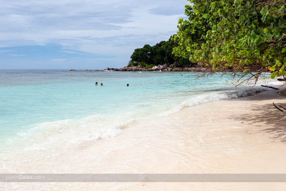 Szmaragdowa woda na plaży Anse Severe