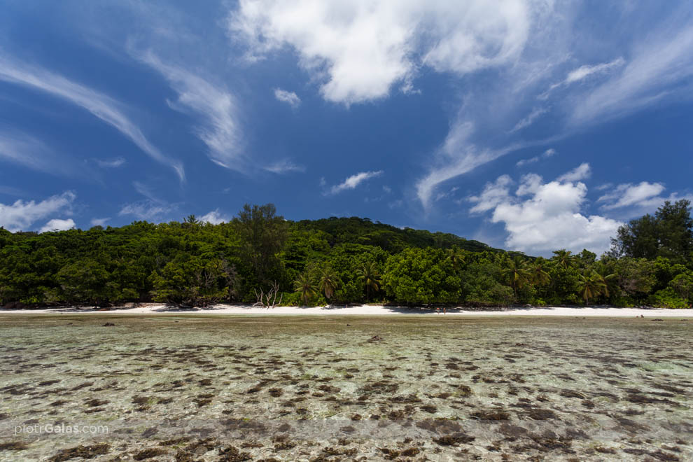 Widok na wyspę La Digue z plaży Anse Severe podczas odpływu