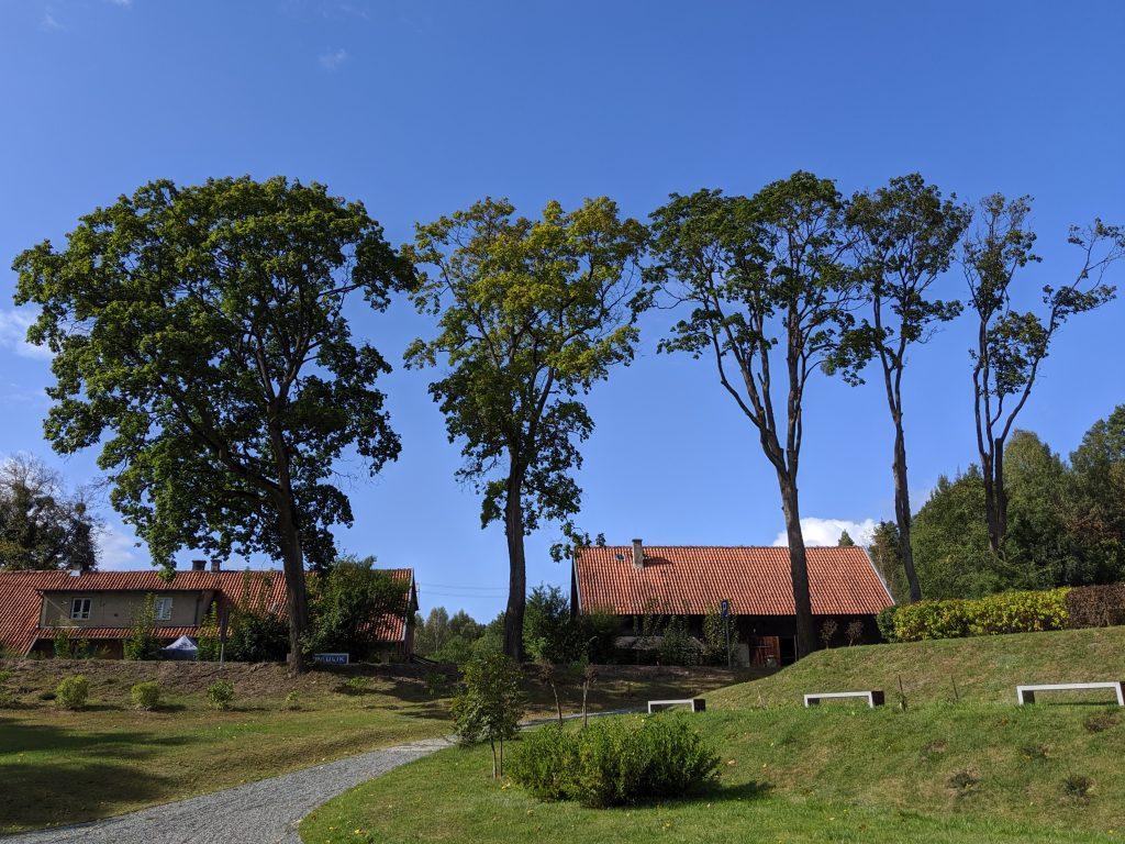Kudypy - stodoły naprzeciwko Leśnego Arboretum Warmii i Mazur